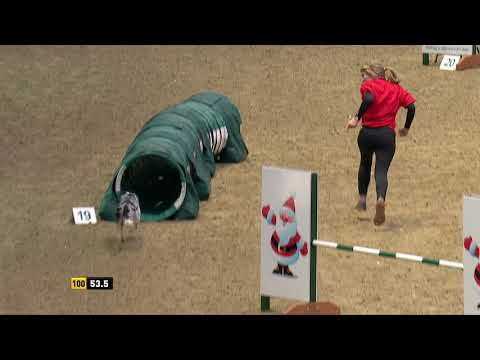 The Kennel Club Large Novice Dog Agility and Jumping Grand Prix at Olympia 2018