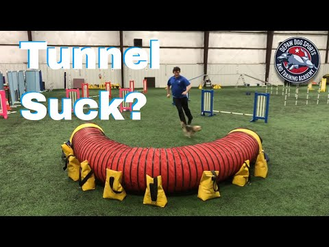 Tunnel Threadle Game – Dog Agility