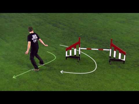 How To Move Your Feet In Dog Agility