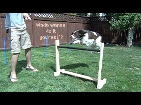 DIY Dog Agility Jump and Weave Poles